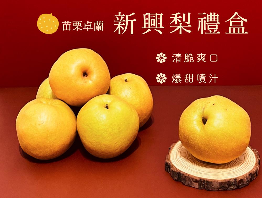 卓蘭新興梨 (日本水梨品種)